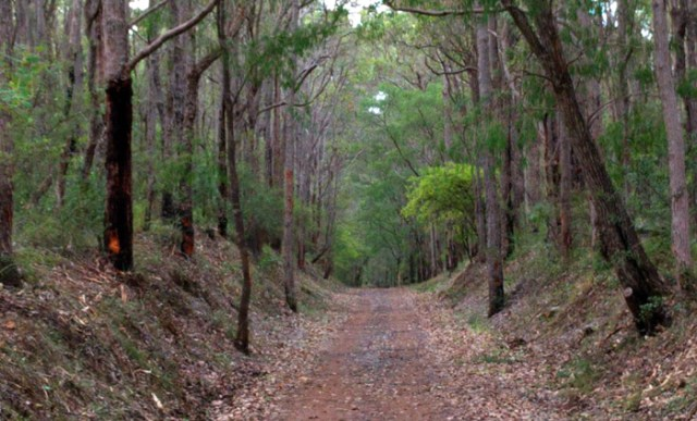 cycling track from Wharncliffe Mill Bush Retreat