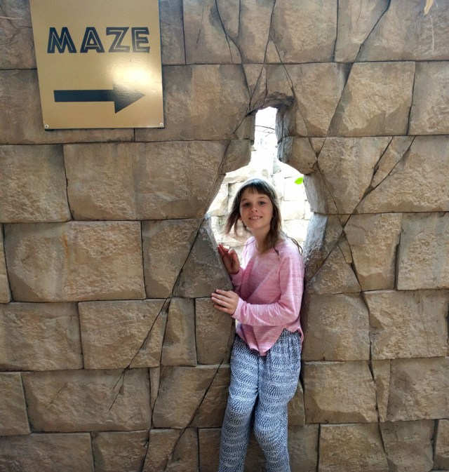 Olive Lost in Maze