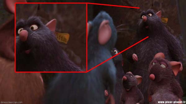 An ear tag in Ratatouille.