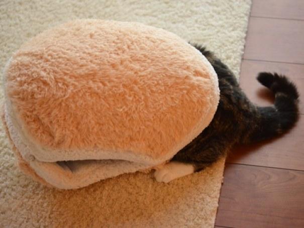 cat-burger-bed-maru-2