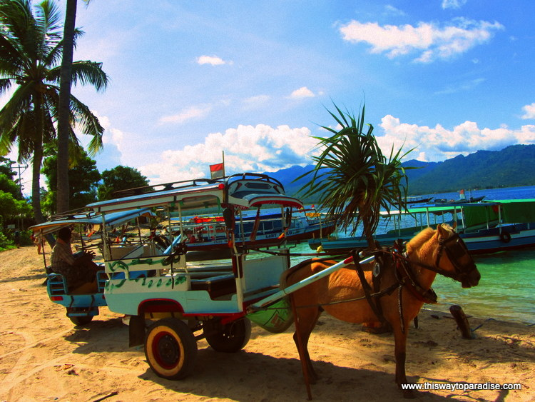 Horse and Cart on Gili Air
