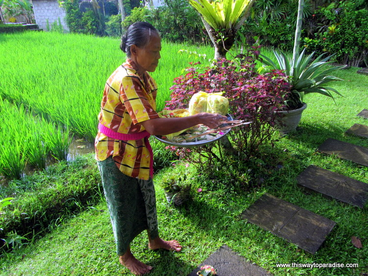 Woman doing the offerings in Ubud, Bali
