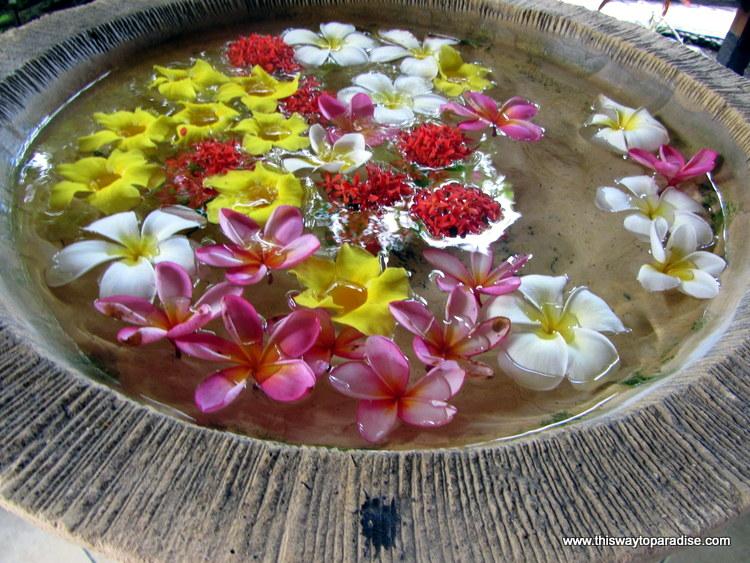 Flowers in Amed, Bali