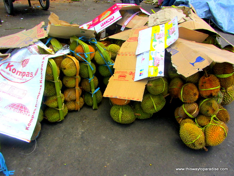 Durian Season in Ambon