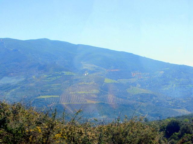 Crete countryside