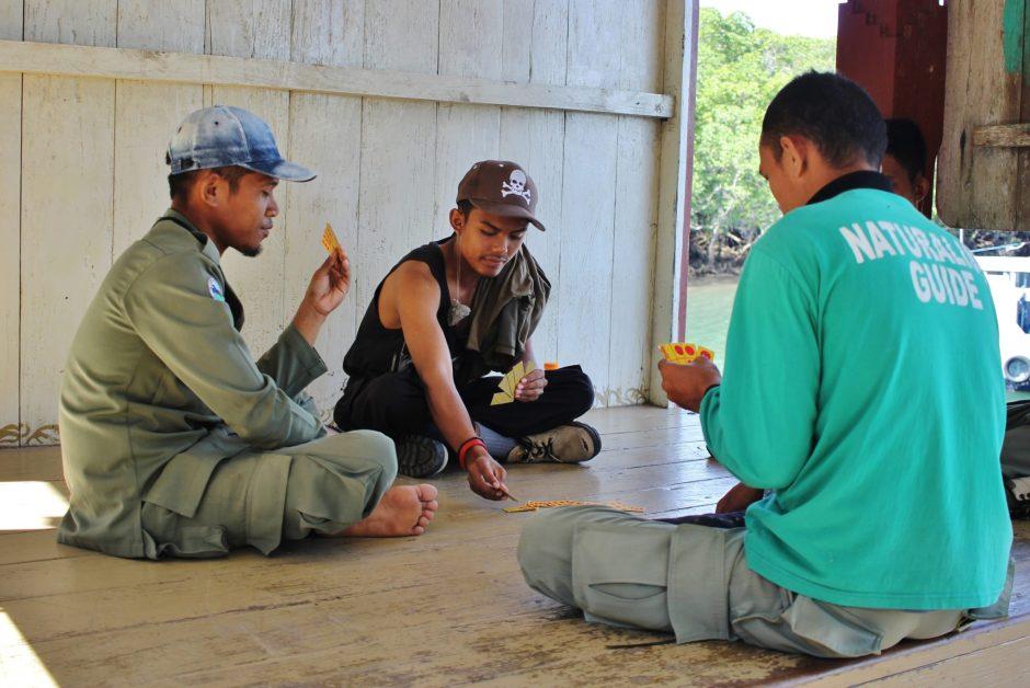 Komodo rangers playing cards