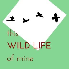 This Wild Life of Mine - on Etsy