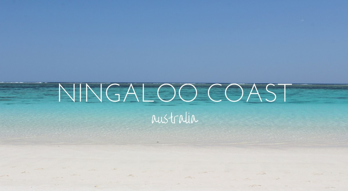 Why The Ningaloo Coast Needs To Be On Your Bucket List