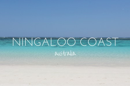 Why the Ningaloo Coast needs to be on your Australia bucket list