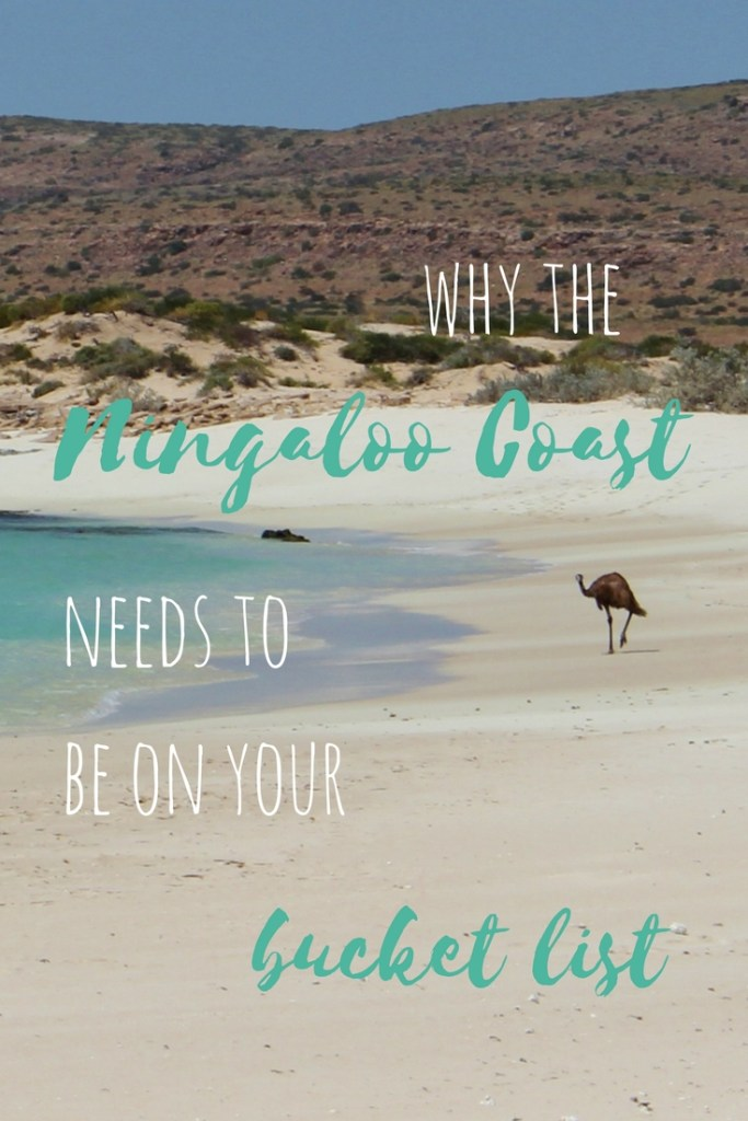 Why the Ningaloo Coast needs to be on your Australia bucket list