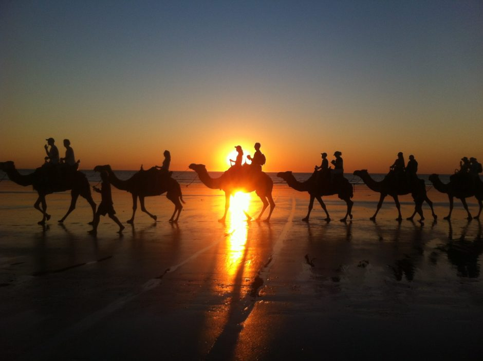 Camel tours walk Cable Beach at sunset in Broome, Australia