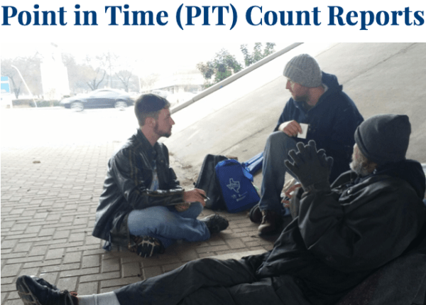 Point in Time Count Report Picture