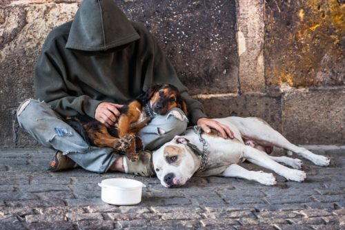Picture of homeless person with their dog