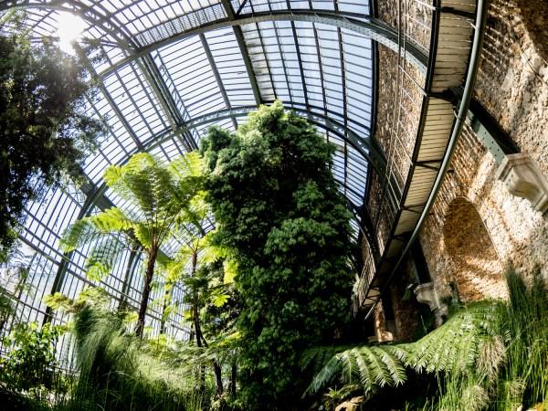 www.thomas-adorff.de   Paris - Jardin des Plantes