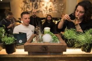 Der Tresen im Herbal Workshop Hamburg