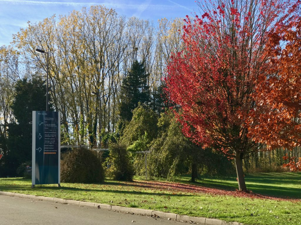Ecole Polytechnique in autumn colours, October 31, 2016