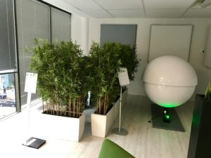 Zen-room at Cisco France