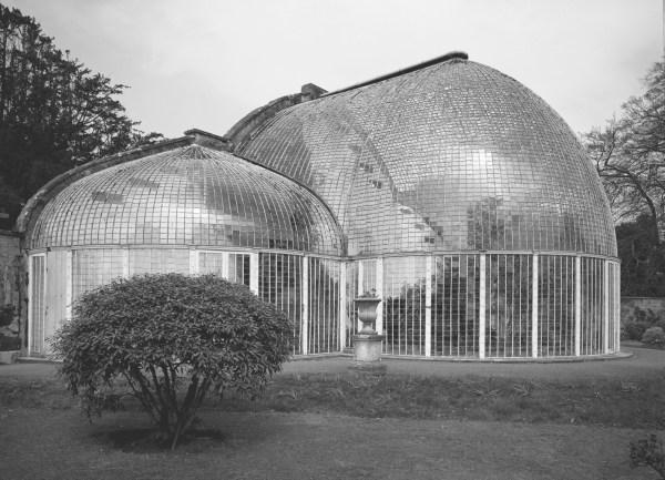 Palmenhaus, Bicton Garden, Devon