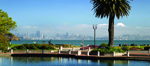 Tiburon homes for sale- View of San Francisco from the town of Tiburon with canary palm on a sunny day