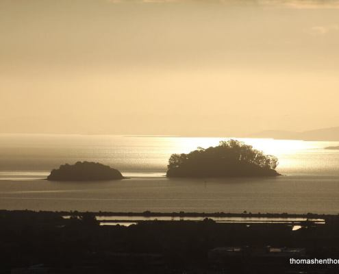 Marin Islands At Sunrise