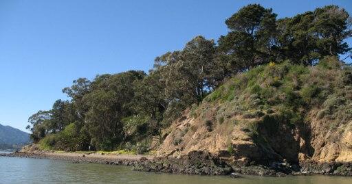 marin islands shoreline