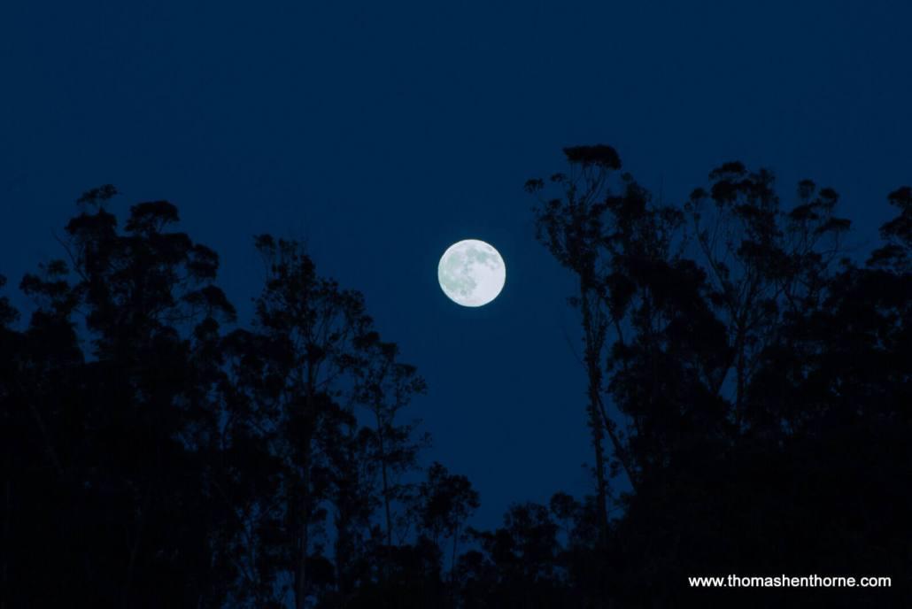 Full Moon over San Rafael