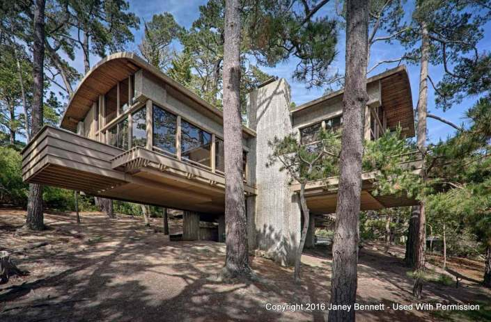 Cantilevered home surrounded by forest
