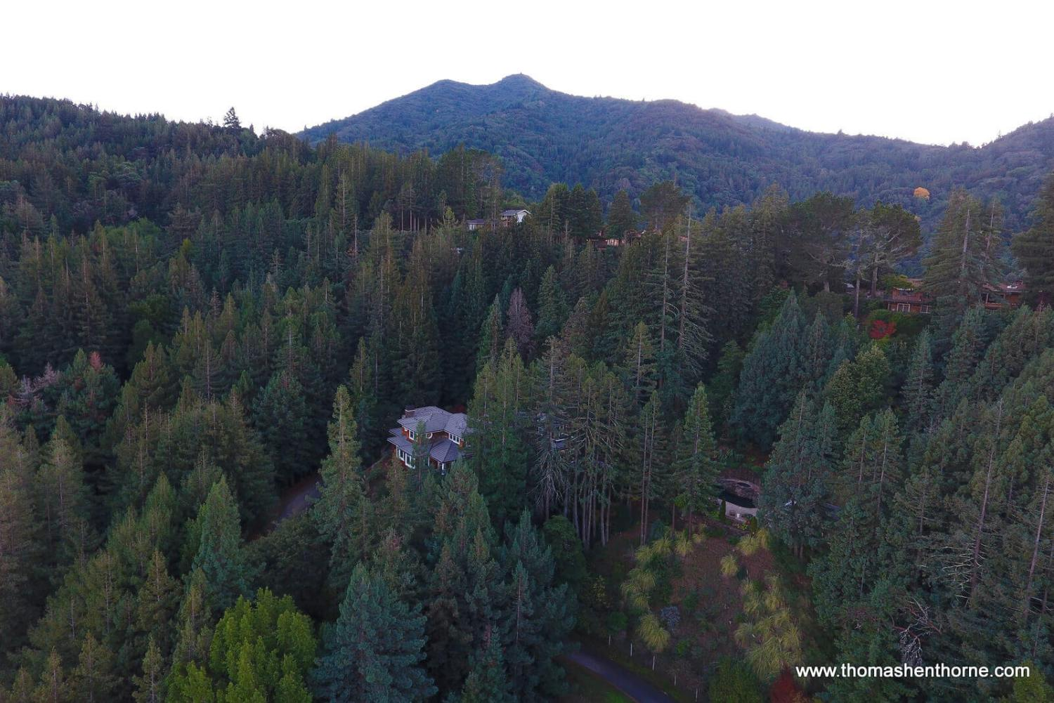 aerial view of home with Mt. Tamalpais in distance