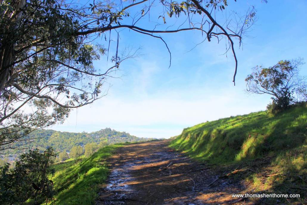 Photo of trail incline with green grass and blue sky