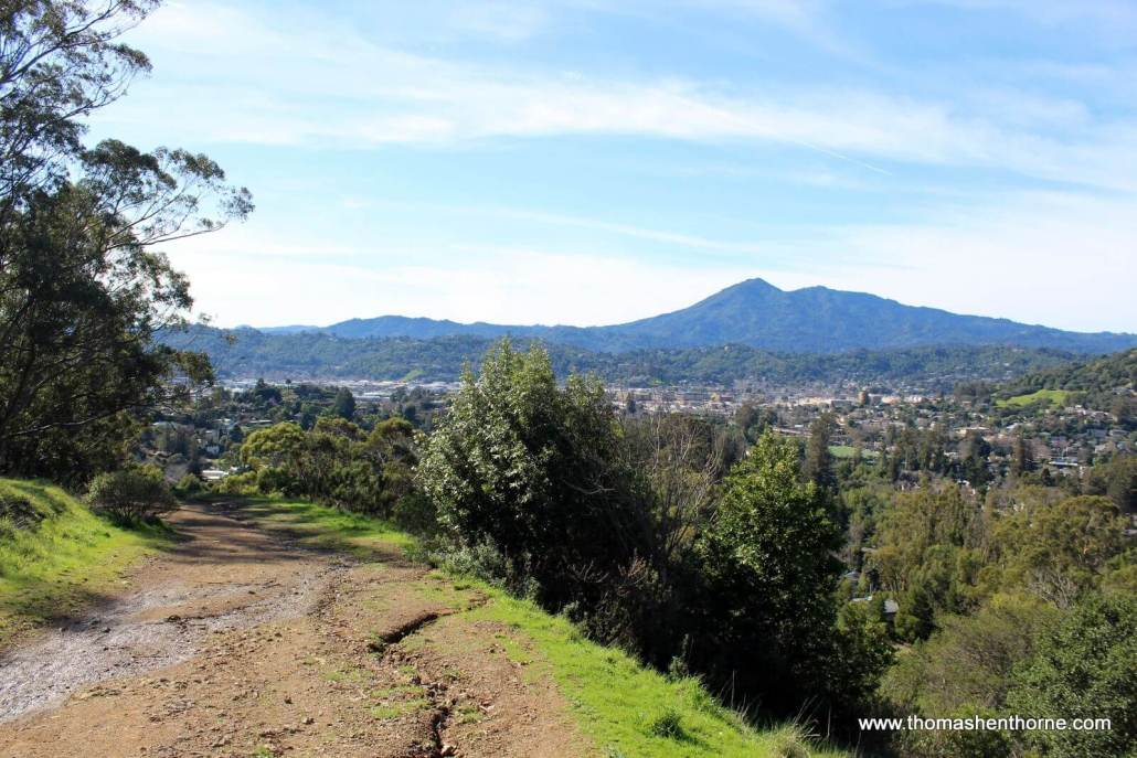 View of Mt. Tamalpais and San Rafael from the Gold Hill Fire Road Trail