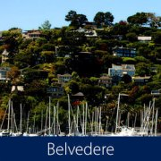 Belvedere Homes for Sale