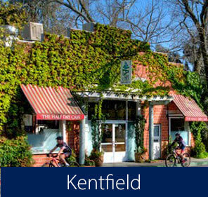 Kentfield Homes for Sale Kentfield Real Estate