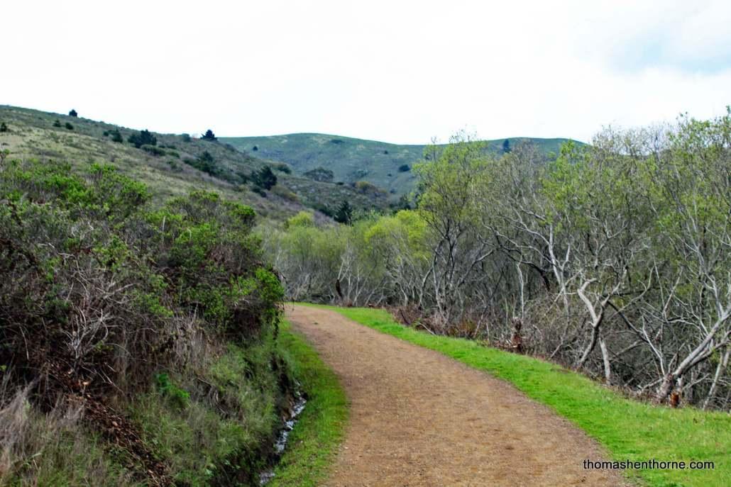 Beginning of Fox Trail