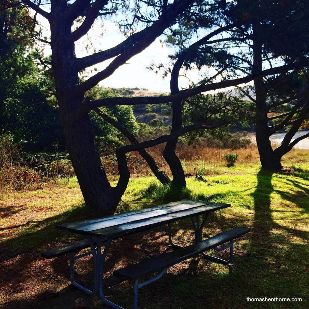 Picnic Table at Tennessee Valley Parking Lot