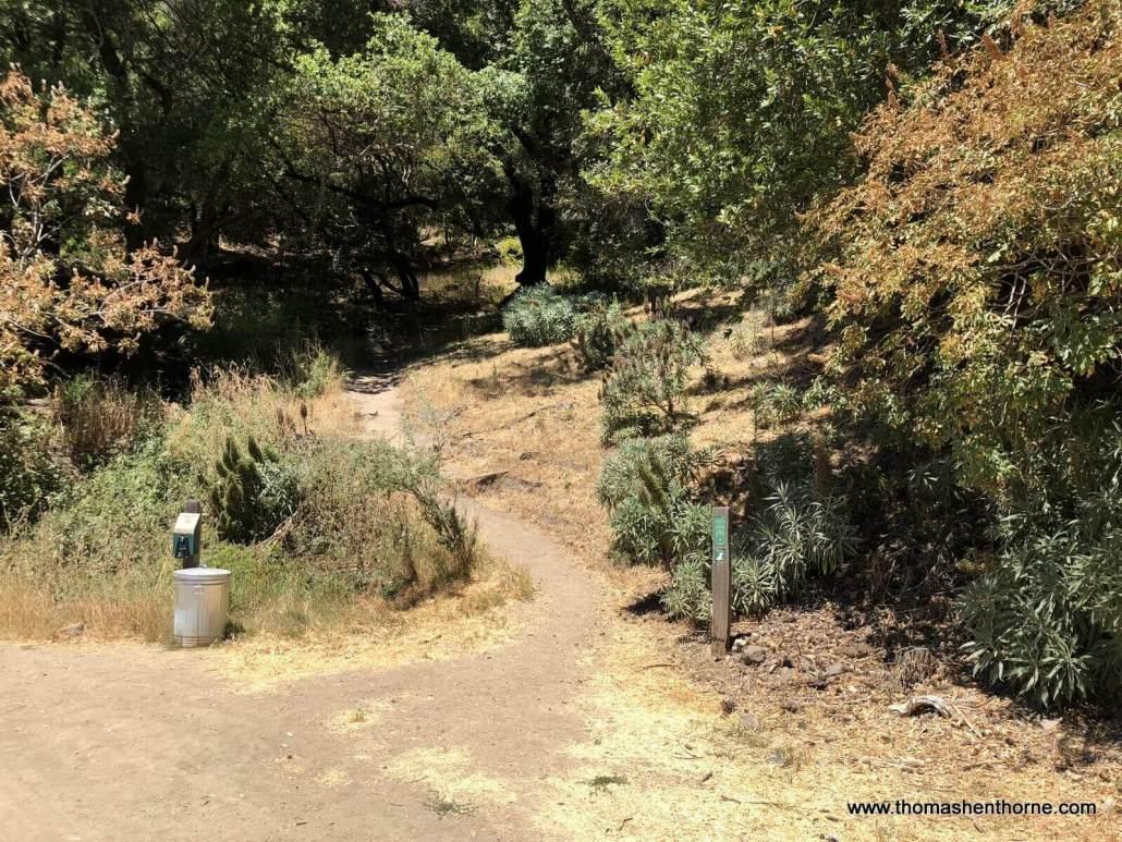 Crown Road Hike Turn off at Hoo Koo E Koo Trailhead