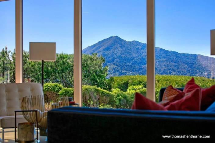 Mount Tamalpais through windows