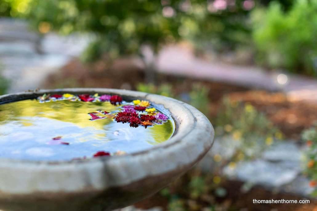 birth bath with flowers