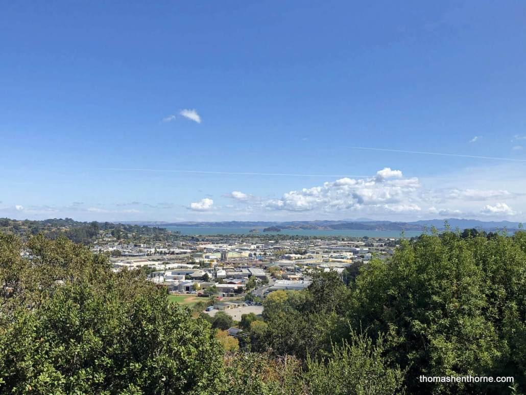 View of San Rafael and Bay