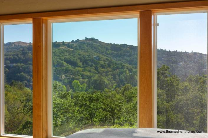 view from 390 Fawn Drive San Anselmo