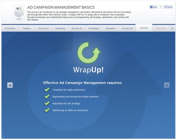 Ad Campaign Management Basics - Summary