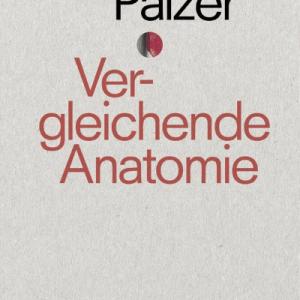 Thomas Palzer Roman, Vergleichende Anatomie. Matthes & Seitz Berlin.