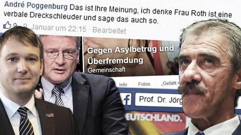 """AfD-Mann Poggenburg bezeichnet Claudia Roth von den Grünen als """"verbale Drecksschleuder"""". Quelle: Facebook"""