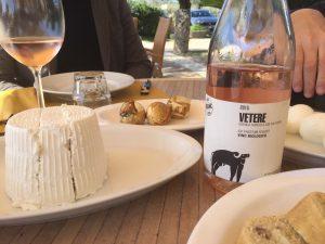 26 ha de vignes à San Salvatore, près de Paestum, mais aussi 450 buffala pour la mozarella!
