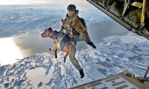 special_forces_skydiving_dog
