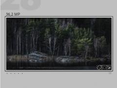 LR-Grid-view-018.JPG