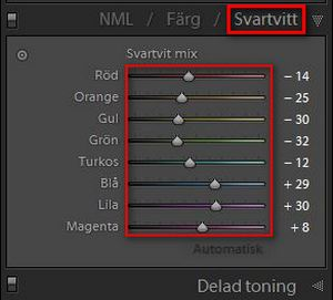 Lightroom-svartvitt-del2-01