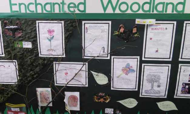 HEADING – ENCHANTED WOODLAND