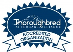 TAA Accredited Organizations - Thoroughbred Aftercare