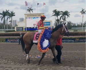 Audible after his win in the Florida Derby