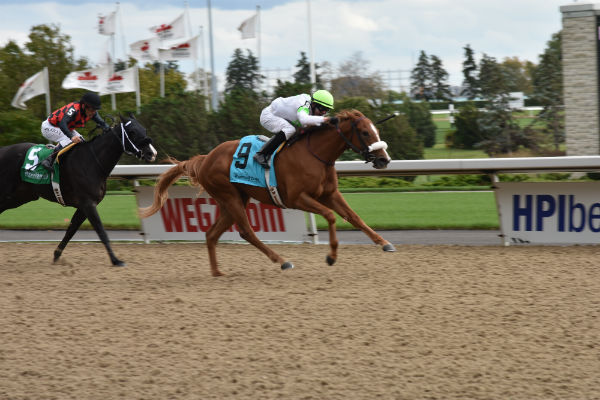 She Calls It wins the TAA race at Woodbine